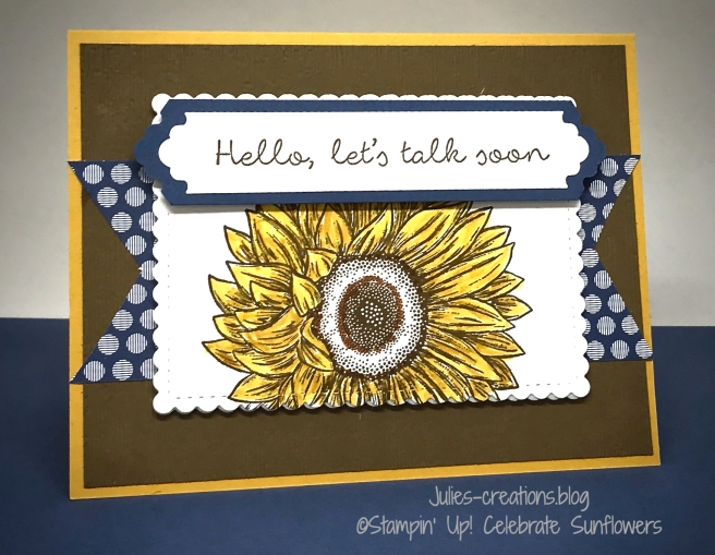 SU-Celebrate Sun Flowers